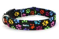 Collier pour chien Paw Wow www.hopdog.fr