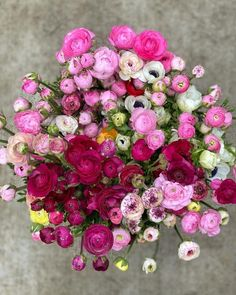 What Is Tumblr, Ranunculus, Trending Topics, Flower Power, Floral Wreath, Fan Art, Flowers, Blog, Beautiful