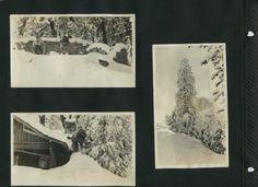 Photograph album #2 - page 51