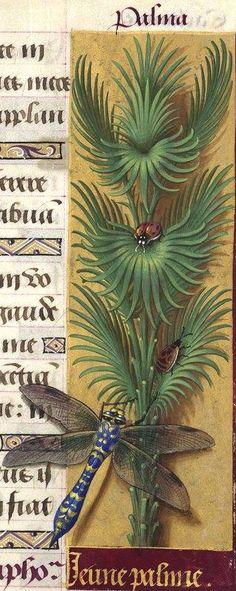-- Grandes Heures d'Anne de Bretagne, BNF, Ms Latin 9474, 1503-1508, f°138r