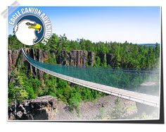 Welcome to Eagle Canyon Adventures - Where your thrill is our pleasure!