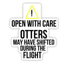 Otters may have shifted during the flight. Sticker Lots of cabin pressure stickers