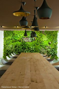 Home - Florawall Flora, Eye Color, Colour, Live Plants, Dining Table, Salzburg, Architecture, Wall, Garden Ideas