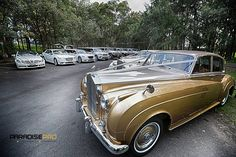 Wedding Rolls Royce Classic Vintage Cars