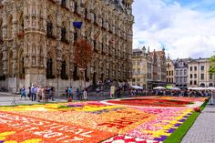 """Flower carpet Go to http://iBoatCity.com and use code PINTEREST for free shipping on your first order! (Lower 48 USA Only). Sign up for our email newsletter to get your free guide: """"Boat Buyer's Guide for Beginners."""""""