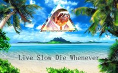 An Original Sloth Wallpaper
