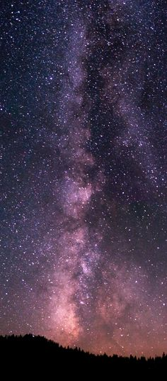 Night time at a camp in Yosemite from this weekend! I'm so stoked for my first attempt at something like this! [OC] [900x2048]