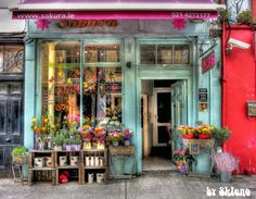 Beautiful florist shop - I adore this bright red with vintage blue