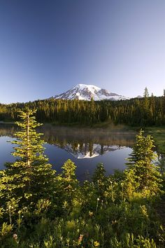 Mount Rainier National Park, Washington; photo by .Craig Tuttle
