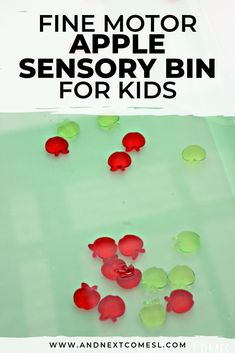 Looking for apple sensory bin ideas for toddlers, preschoolers, or kindergarten aged children? Well, they'll love this easy apple sensory bin with water. All that scooping and pouring is a great way to develop fine motor skills this fall. Sensory Activities Toddlers, Autumn Activities For Kids, Gross Motor Activities, Autism Activities, Infant Activities, Toddler Preschool, Preschool Crafts, Outdoor Activities, Sensory Bottles