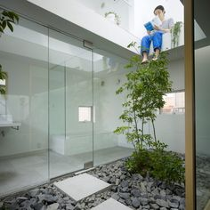 This house in Japan by Suppose Design Office features a room dedicated to plants. The transparent courtyard space is filled with rocks and flowerbeds, along with paintings and square-shaped stepping stones.