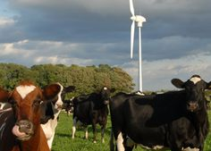 Holyrood sows green seeds image - Holyrood has launched the Agri-Renewables Strategy for Scotland to aid the development of renewable energy projects on farms.
