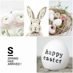 Spring has arrived / happy Easter ❤️ Pasen Hoppy Easter, Easter Bunny, Easter Eggs, Easter 2018, About Easter, Easter Celebration, Easter Holidays, Spring Blooms, Egg Decorating