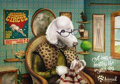 100 publicités créatives de Février 2015
