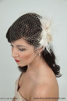 birdcage veil... Love this