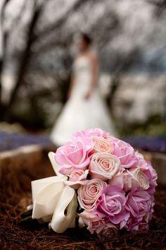 Beautiful shot from my friend's bridal portraits.