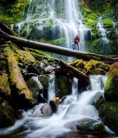 The best type of therapy. @taylorgrayphoto at the base of Proxy Falls with his nasturtium f-stop pack. Regram of @forsakeco . Thanks for the tag! REMINDER - Last day of the Fall Bundle sale! More in our profile link.  #fstopgear #thatpnwlife #customerspotlight by fstopgear