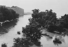 Donauhochwasser in Wien 1954 Vienna, River, History, Vintage, Outdoor, Photos, Old Pictures, Concerts, Exhibitions