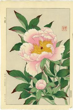 artelino - Search for thousands of sold art prints - Japanese prints and contemporary Chinese art. Asian Flowers, Japanese Flowers, Art Floral, Japanese Prints, Japanese Art, Illustration Blume, Guache, Japanese Painting, Chinese Painting