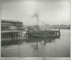 Cleansing of the wharves in Sydney in 1900 during the Big Cleanse for the Bubonic Plague.