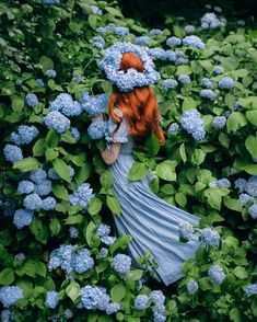 aclotheshorse: The poetry of earth is never dead🌿🌿🌿Do I look like a flower fairy yet? This has to be one of my most epic pictures to date. How lovely is this hydrangea bush? Fantasy Photography, Girl Photography, Bonding Styles, Old Dress, Fantasy Magic, Girls With Flowers, Poses References, Princess Aesthetic, Anne Of Green Gables