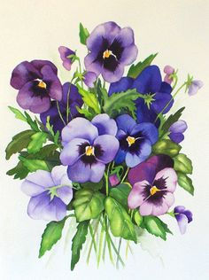 Fern Ness Watercolor purple pansies floral art