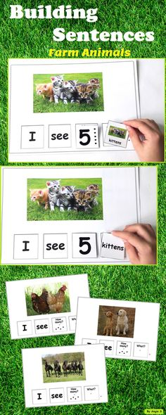 Build a Sentence - Farm Animals, Autism and Special Needs. These printables with real life pictures are very helpful when leraning the vocabulary on farm animals topic with kindergarten and preschool students. #autism #farmanimalsresources #tptresources Formore resources follow https://www.pinterest.com/angelajuvic/autism-and-special-education-resources-angie-s-tpt/