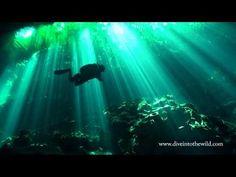 Top 10 Freshwater Dive Sites • Scuba Diver LifeScuba Diver Life