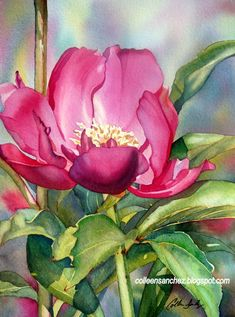 hibiscus flower paintings - Google Search