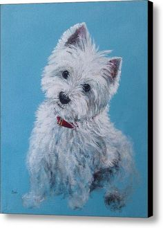 Westie - West Highland Terrier - Zoe -meaner Than She Looks Canvas Print / Canvas Art By Cheri Miller
