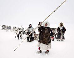 Civilisations primitives en voie de disparitions - Photos de Jimmy Nelson - Nenets , dans l'Arctique , au nord de la Russie In This World, People Around The World, Mongolia, Jimmy Nelson, Reportage Photo, English Artists, Portraits, Photography Projects, Passed Away