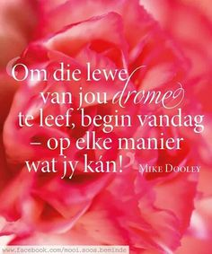 Om die lewe van jou drome te leef...... Afrikaans Quotes, Special Quotes, Printable Quotes, Believe In You, Dreaming Of You, Life Quotes, Inspirational Quotes, Wisdom, Hart