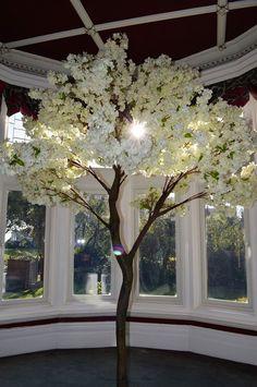 Wedding Venues, Weddings, Plants, Pictures, Wedding Reception Venues, Wedding Places, Wedding, Plant, Marriage