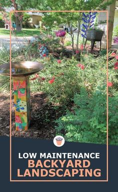 These xeriscape plants are veterans from gardens around the world, and have stood the test of time. Many of these perennials are well known from our grandparent's time, planted for their admirable qualities of low maintenance, iron tough constitution and beauty. Don't miss my list (with pictures) of favorite perennial plants that love dry weather. #landscaping #lowmaintenancegardening #plants Vertical Garden Plants, Shade Garden Plants, Succulent Gardening, Succulents Garden, Container Gardening, Gardening Tips, Xeriscape Plants, Drought Tolerant Plants, Low Maintenance Backyard