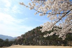 前山の岩の造景 - WolMyeongDong(キリスト教福音宣教会)