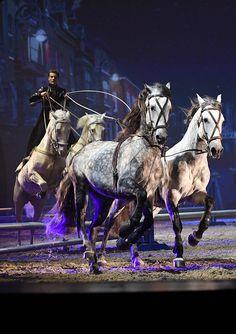 """Der Franzose Laury Tisseur zeigt in der neuen APASSIONATA-Show """"Cinema of Dreams"""" die Ungarische Post. Während er auf dem Rücken zweier Pferde steht, lenkt er vor sich weitere zwei oder vier Pferde - und das hauptsächlich mit seiner Stimme!"""