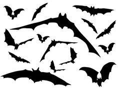 Flying bat reusable window vinyl. Black, Red or White vinyl fruit bats. Halloween reusable window decorations