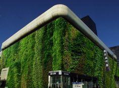 Jairo: #Architecture : More Vertical Gardens