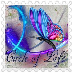 Ƹ̵̡Ӝ̵̨̄Ʒ♥♥•.¸¸.• Butterflies and Dragonflies Album