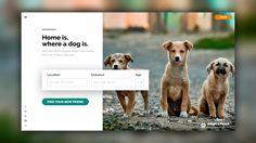 Dog adoption UI preview. Check out https://www.behance.net/vladgramadesign . . . #design #interface #graphic #ui #ux #uxdesign #travelblog #webdesign #wordpress #theme #uiux #graphicdesign #interfacedesign #userexperience #userinterface #flatdesign #behance #portfolio #gallery #webdeveloper #web #blogger #app #appdesign #framework #layout #grid #iasi #romania #productdesign #affinitydesigner #dog #adoption #website