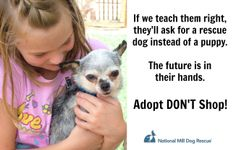 Educate the next generation! #NMDR #adoptdontshop