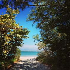 The path to happiness starts right here Sanibel Island, Fort Myers, Beach Pictures, Island Life, Embedded Image Permalink, Beautiful Beaches, Paths, Scenery, Ocean