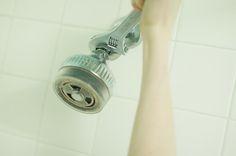 DIY Basics:  Replacing a Shower Head   Renters Solutions