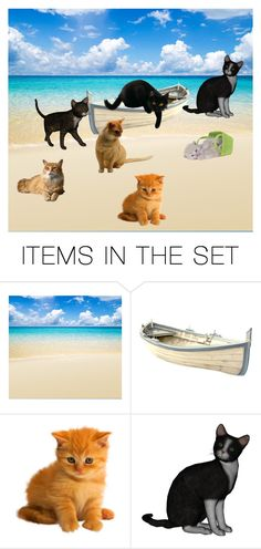 """""""cat beach"""" by americacat ❤ liked on Polyvore featuring art"""