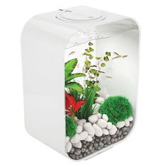 BiOrb by Oase Life 4 Gallon Aquarium - Add some calm to your home or office with the BiOrb by Oase Life 4 Gallon Aquarium . This compact aquarium boasts a unique design ideal for smaller fish. Aquarium Biorb, Led Aquarium, Acrylic Aquarium, Aquarium Filter, Tropical Aquarium, 55 Gallon Aquarium Stand, Aquarium Cabinet, Betta Fish Tank, Fish Tanks