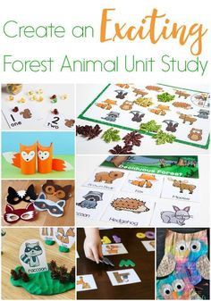 Create an exciting forest animal unit study! Unit studies are a great way to introduce learning materials to kids with a fun theme! We have over 50 exciting activities to create your own forest animal unit study! You will find activities for science, math, literacy, art, sensory and more! Make a forest animal unit study today! #learn #kids #learning #math #science #preschool #kindergarten