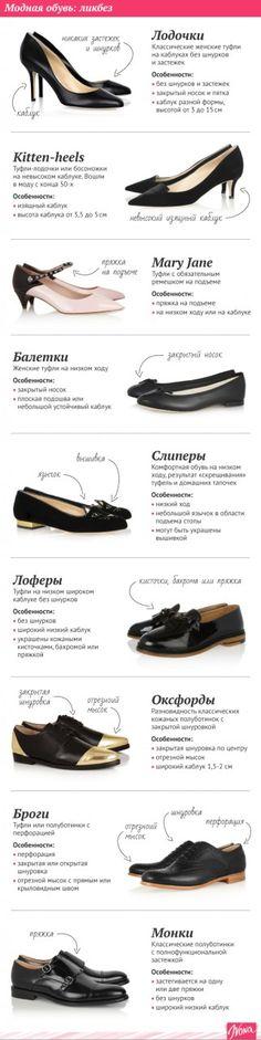 Гид по модной обуви: Инфографика | ПолонСил.ру - социальная сеть здоровья