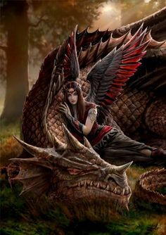 Winged Companions, Anne Stokes