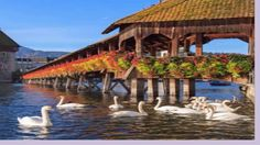 Best Places in Switzerland - A Little Paradise In The World - http://quick.pw/1gyn #travel #tour #resort #holiday #travelfoodfair #vacation