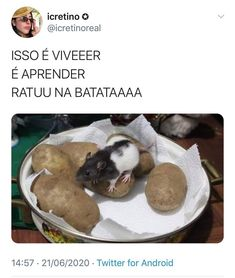 Love Memes, Best Memes, Funny Memes About Life, Comedy Memes, Disney Memes, Wtf Funny, Haha, Twitter, Ratatouille